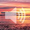 5. We need spiritual happiness (video)