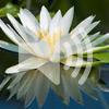 6. Sankirtan meditation