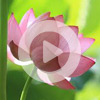 3. Meditation with beads (VIDEO)