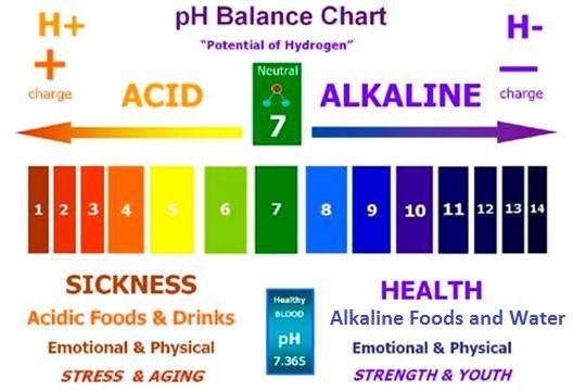 Ph Balance OK