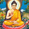11. Does Buddhism contradict the Vedic scriptures?