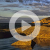 5. MEDITATION LEADING TO HARMONY (VIDEO)